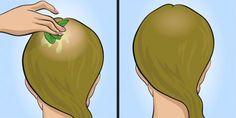 Dein Haar wird wachsen wie verrückt und du wirst ein Sehvermögen wie ein Adler haben: Iss 3 Esslöffel pro Tag und du wirst Zeuge eines Wunders sein!   njuskam!