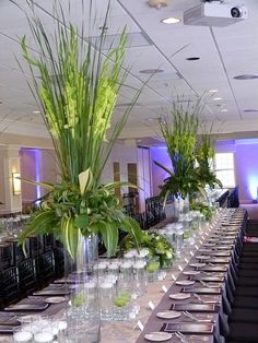 Cattail foliage and green gladiolus based with a variety of aspidistra, seeded eucalyptus, dusty miller,and salah foliage are placed on top on large cylinder vases.  Rows of 7 and 10 inch cylinder vases with floating candles, and 6 inch vase with a fuji mum floating inside the vases run the length of the tables.  A low massed arrangement finishes the impressive effect!