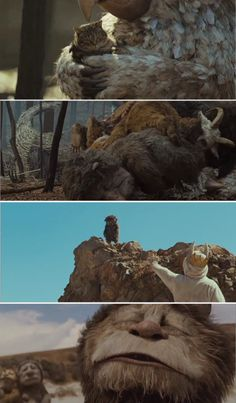Where The Wild Things Are, 2009 (dir. Spike Jonze) Submitted by doublec