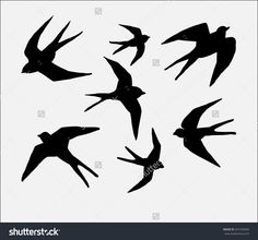 Swallow Silhouette Stock Photos, Images, & Pictures | Shutterstock
