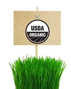 Gotta love it!! Premium #Wheatgrass/ #Cat #Grass Seeds/ Red Wheat Berries. Amazing Non-GMO/ USDA Organic. Bonus-Free How to Grow, Juice without a Juicer and Shake Recipes. Best for DIY Sprouting, Shots, Cooking or Emergency Food Storage Kits. For You and Your Favorite Pet. 2 lb. Bulk. Read Our Rave reviews. BBGF http://www.amazon.com/dp/B00YTMA7SA/ref=cm_sw_r_pi_dp_fHsZvb1VC7P49