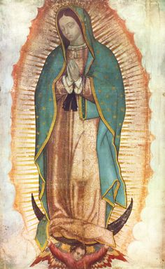 Blessed Mother <>< Our Lady of Guadalupe