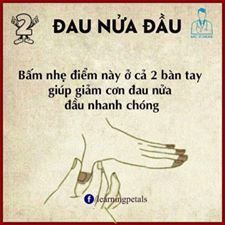 Health And Fitness Articles, Health Advice, Health And Nutrition, Massage For Headache, Vietnamese Language, Dream Word, Healthy Facts, Workout For Flat Stomach, Relaxing Yoga