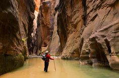 Hiker in the Virgin River Narrows, Zion National Park, Utah    -   Photo Credit: Gary Crabbe / Enlightened Images; http://enlightphoto.com
