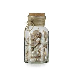 Objet de décoration Naturel - Coquillage - Les objets décoratifs - Vases et objets de déco - Salon et salle à manger - Décoration d'intérieur - Alinéa