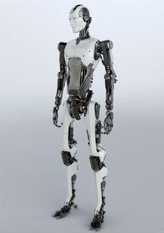 Humanoid Model