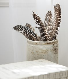 Something as simple as feathers can create pattern and texture to add to the Modern Explorer style.