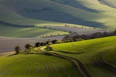United Kingdom, East Sussex, South Downs National Park, View of landscape - Slawek Staszczuk/Getty Images