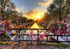 Se viajar é bom, porque te permite conhecer o mundo e ficar automaticamente mais rico, estudar no estrangeiro é ainda melhor, porque tem tudo isso e mais o desafio de um novo sistema de ensino, de uma vida fora da sua zona de conforto, de pessoas diferentes e de uma nova rotina. E quando nos perguntam que país europeu a gente escolheria para passar uma temporada, a resposta é imediata: Holanda. Os motivos são vários, mas para quem vai estudar, saber que a Holanda tem o 3º melhor sistema de…