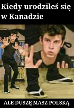 Reaction Pictures, Funny Pictures, Haha Funny, Hilarious, Shwan Mendes, Funny Mems, Shawn Mendes Memes, Magcon Boys, 1d And 5sos