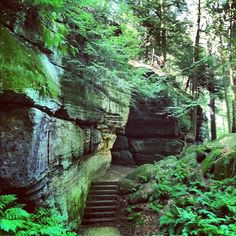 #Northeast #Ohio's #Cuyahoga Valley National Park   so many areas like this. A great place to walk along the canal, bike, or take a train ride