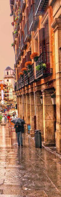 Calle de Toledo con la Basílica de San Isidro al fondo, Madrid. Spain.