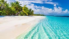 Luxury Bahamas Resorts Are More Affordable Than You Might Think. Palm Tree Background, Beach Background, Kobe, Bahamas Resorts, Maldives Beach, Maldives Hotels, Surf, Blue Sky Clouds, The Beach