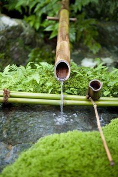 Adachi Japanese garden