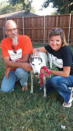 Maddie is home forever!  Thanks to the special souls who give the seniors a loving home!  #galtx