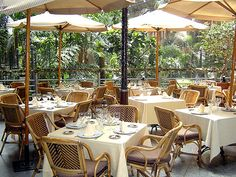 SAMARKANDA RESTAURANTE, MADRID. Samarkanda Jardin is a very exotic railway station restaurant. Exotic for the fact that you are under the roof of Atocha Station in Madrid & it looks and feels more like fine-dining in a tropical greenhouse.