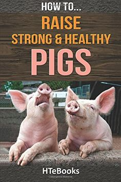 How To Raise Strong & Healthy Pigs: Quick Start Guide (Ho...