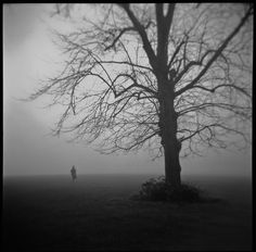 We were lost around here somewhere by .scribe, via Flickr>>> fantastic photo