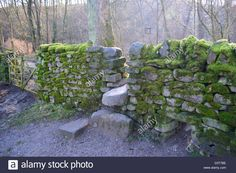 Stock Photo - Dry Stone Wall, Stone Stile and Gate Covered in Green Moss on The Dales Way Long Distance Footpath Wharfedale Yorkshire Dales Mexican Hat, Stone Masonry, Dry Stone, Stone Walls, Yorkshire Dales, Stiles, Long Distance, Gates, Stepping Stones