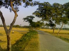 Fulpur, Rural Bangladesh Village Photos, Village Houses, Landscape Photos, Beautiful Paintings, Countryside, Fields, Country Roads, Street, World