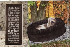 paper collage art  dog collage  It Came to by MaterialWhirlCollage, $5.99