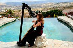 harp.jpg (1024×680)