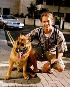 Paul Walker, and German Shepherd