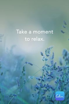 Sleep, Meditate and Relax with Calm. Sleep, Meditate and Relax with Calm. Relax Quotes, Calm Quotes, Peace Quotes, Wisdom Quotes, Positive Quotes, Life Quotes, Monday Quotes, Meditation Quotes, Yoga Quotes