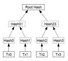 albero merkle bitcoin