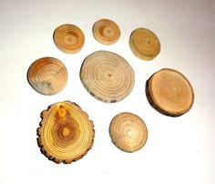 Natural cabochon jewelry supplies wood slices mix. by NayasArt