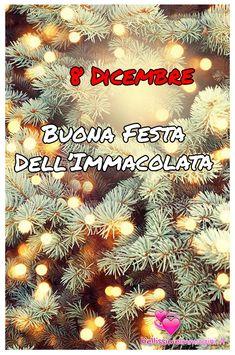 Immagini 8 Dicembre Immacolata da mandare Italian Memes, Italian Quotes, Saints Days, Merry Christmas, Memories, Love, Movie Posters, Reyes, Madonna