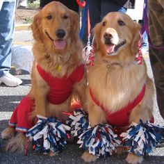 daisy and daphne dressed as cheerleaders