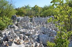 Bois de Païolive, Ardeche