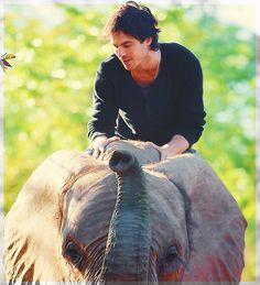 Ian Somerhalder. I'm jealous of an elephant now.....