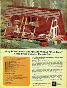 I've got to buy this or build this A-Frame Cabin
