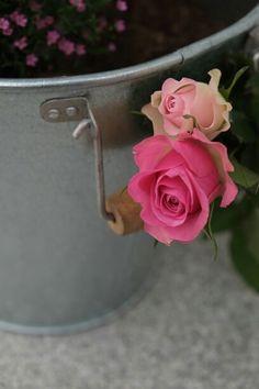 Rose&Eimer