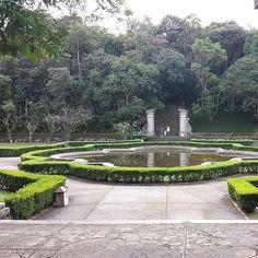 Jardim Botânico   30 lugares deslumbrantes em São Paulo que vão fazer você se sentir um turista
