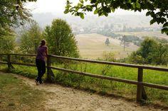 Bukowa Góra.  (Foto: W. Kowalski)