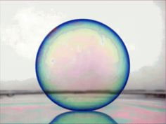 Have You Ever Seen a Soap Bubble Bounce?