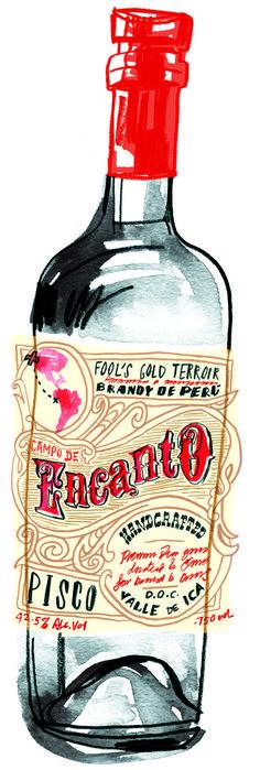 Pisco Bottle Design | #design #pisco