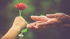 6 Science-Backed Ways Being Kind Is Good for Your Health - Quiet Revolution Quiet Revolution, Weed Humor, Latest World News, Medical Problems, Life Is Hard, Health And Wellbeing, Mental Health, For Your Health, Introvert