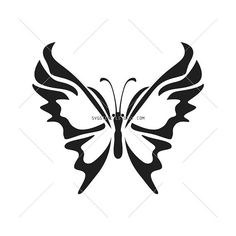 SVG  Beautiful Butterfly Stencils Silhouettes Monogram