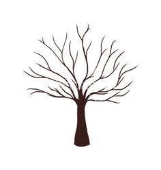 Easy How To Draw A Tree Without Leaves Image Gallery - Lapse Shot