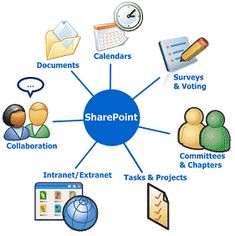 A collaboration software program like SharePoint is extremely useful in the business world, and is utilized a lot in the course of this class. With SharePoint one can share documents, create surveys and team calendars and customize their SharePoint profile.