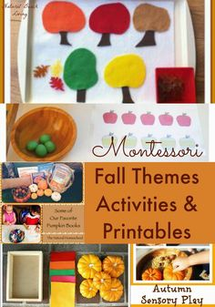 Montessori Toddler and Preschool Fall Themes