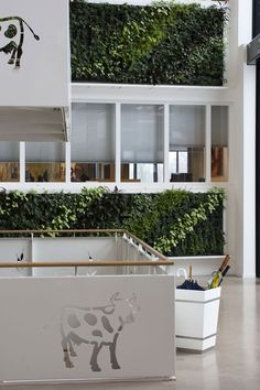 We take a closer look at Green Walls with key examples from green wall company Cultiwall.