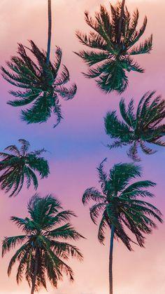 Plano De Fundo paleo and vegan cake - Vegan Cake Tumblr Wallpaper, Sunset Wallpaper, Pink Wallpaper, Screen Wallpaper, Nature Wallpaper, Wallpaper Backgrounds, Aesthetic Pastel Wallpaper, Aesthetic Wallpapers, Sky Aesthetic