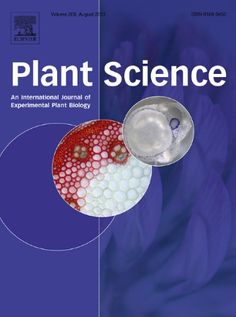 Публикации в журналах, наукометрической базы Scopus  Plant Science #Plant #Science #Journals #публикация, #журнал, #публикациявжурнале #globalpublication #publication #статья