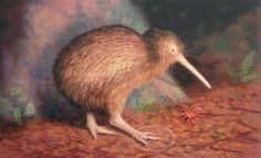 New Zealand Kiwi painted in pastel. Fine art giclee print available.