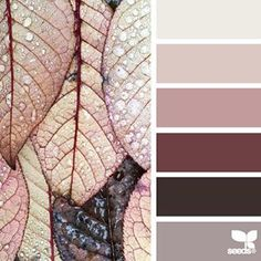 5 Safe Tips AND Tricks: Interior Painting Palette Design Seeds interior painting colors brown.Interior Painting Doors Before And After interior painting ideas bathroom. Colour Pallette, Colour Schemes, Color Patterns, Color Combos, Paint Schemes, Colour Palette Autumn, Autumn Colours, Design Seeds, Deco Design